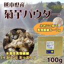 菊芋 粉末 パウダー 100g