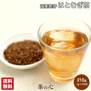 はとむぎ茶 国産 ティーパック 30包 はと麦茶 7g 総重量 210g ハト麦茶 ハトムギ茶 はと麦 発芽 ハトムギ 鳩麦 送料無料 健康茶 ヨクイニン 植物茶