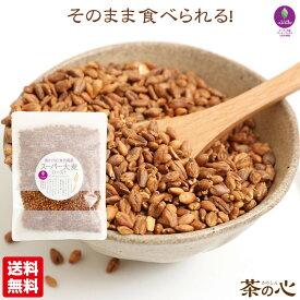 スーパー大麦 ロースト バーリーマックス 100g シリアル 腸活 スーパーフード 送料無料 レジスタントスターチ