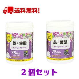【2個セット】ユニマットリケン おやつにサプリZOO 鉄+葉酸 75日分 ブドウ風味