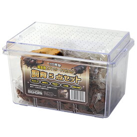 成虫用 カブトムシ・クワガタムシ 飼育5点セット 関東当日便