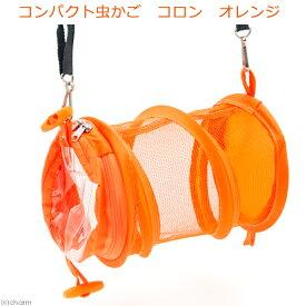 コンパクト虫かご コロン オレンジ 関東当日便