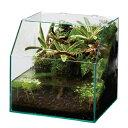 GEX グラステリア アクアテラ 300キューブ お一人様1点限り 関東当日便