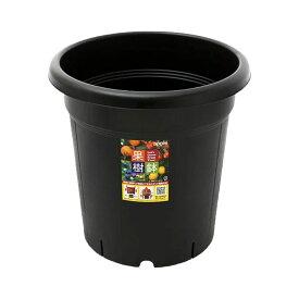 アップルウェアー 果樹鉢 365型 ブラック お一人様1点限り 関東当日便