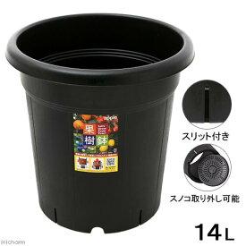 アップルウェアー 果樹鉢 310型 ブラック お一人様3点限り 関東当日便