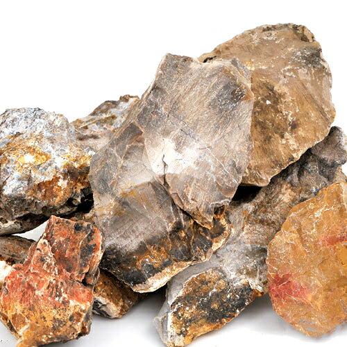 形状お任せ 木化石 サイズミックス 5kg 関東当日便