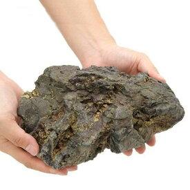 形状お任せ 風山石 Lサイズ(約20〜25cm) 1個 関東当日便
