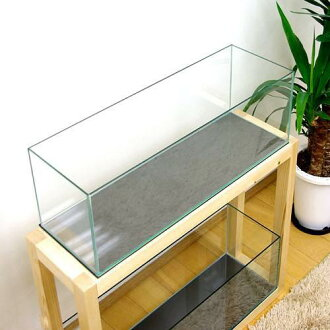 Limited to 1 per person GLASIA GL-600 C 60 cm slim all glass Aquarium (60 x 20 x 20 cm) (5 mm) (unit)