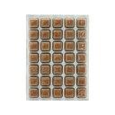 冷凍★さんみ コペポーダ 100g 1枚 別途クール手数料 常温商品同梱不可
