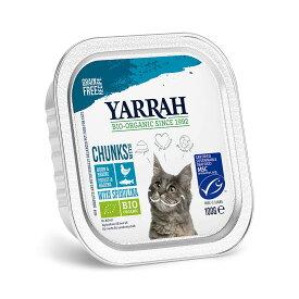 YARRAH(ヤラー) チキンと魚のキャットチャンク 100g 正規品 キャットフード YARRAH ヤラー 関東当日便