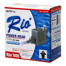 60Hz カミハタ Rio+(リオプラス) 800 流量11.2リットル/分(西日本用) 関東当日便