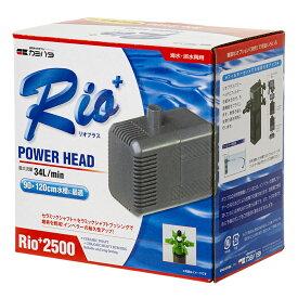 50Hz カミハタ Rio+(リオプラス) 2500 流量34リットル/分 (東日本用) 沖縄別途送料 関東当日便
