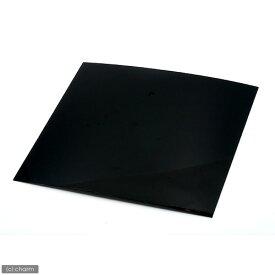 30cmキューブ水槽用 丈夫な塩ビ製バックスクリーン 30×30cm 黒 関東当日便