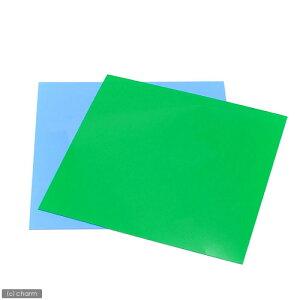 30cmキューブ水槽用 丈夫な塩ビ製バックスクリーン 30×30cm 若草 ライトグリーン 関東当日便