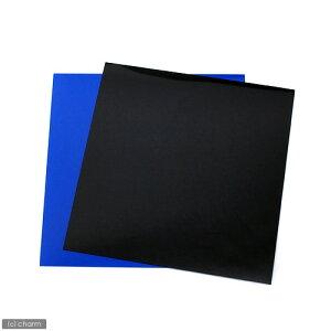 RG−30水槽用 丈夫な塩ビ製バックスクリーン 28.3×27.5cm 黒 関東当日便
