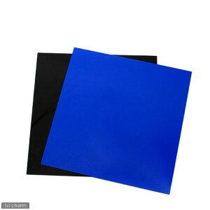 RG—30用バックスクリーン青