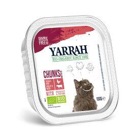 YARRAH(ヤラー) ハーブとビーフのキャットチャンク 100g 正規品 キャットフード YARRAH ヤラー 関東当日便