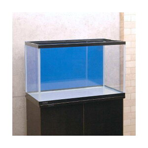 60cm水槽用 丈夫な塩ビ製バックスクリーン 60×35cm 青 スカイブルー 関東当日便