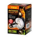 昼用集光型 サングロー タイトビームバスキング スポットランプ 75W (橙) お買得2個 爬虫類 保温球 関東当日便