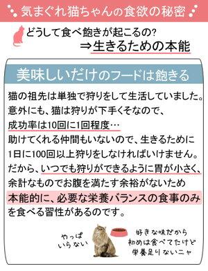 箱売りロイヤルカナンFHN−WETユリナリーケア85gお買い得48袋9003579000366【HLS_DU】関東当日便