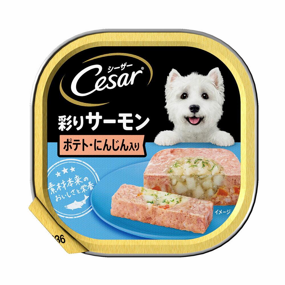 シーザー あじわいサーモン風味 ポテトとにんじん入り 100g ドッグフード シーザー 2個入り 関東当日便