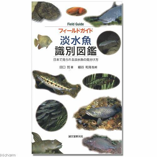 フィールドガイド 淡水魚識別図鑑 書籍 関東当日便