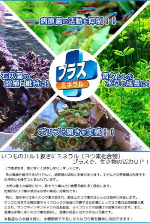 テトラコントラコロラインプラス1000ml淡水・海水用カルキ抜き塩素中和関東当日便