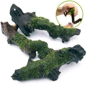 (水草)巻きたて ジャイアント南米ウィローモス 流木 Mサイズ(約20cm)(無農薬)(1本)