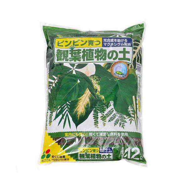 花ごころ 観葉植物の土 12L お一人様6点限り 関東当日便