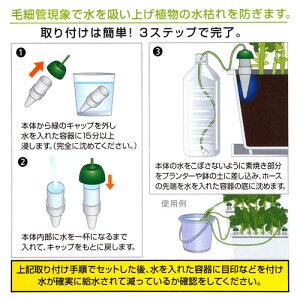 水やり当番1PLサイズ【関東当日便】