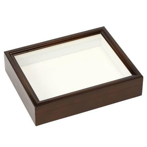バードウィング製 ドイツ型標本箱 BWミニ (幅25×奥行き20×高さ5.5) 昆虫 標本用品 関東当日便