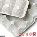 紙製卵トレー 45×29cm 100枚セット 昆虫 コオロギ 飼育 ハウス ケース 関東当日便