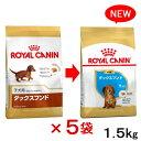 ロイヤルカナン BHN ダックスフンド 子犬用 1.5kg 5個 【bhn_201603_02】 関東当日便