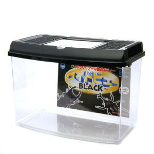 マルカン ワイドビューBLACK(大)(380×230×250mm) プラケース 虫かご 飼育容器 昆虫 カブトムシ クワガタ 関東当日便