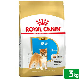 Royal Canin BHN Shiba Inu puppy for the 3 kg authorised Kanto day flights