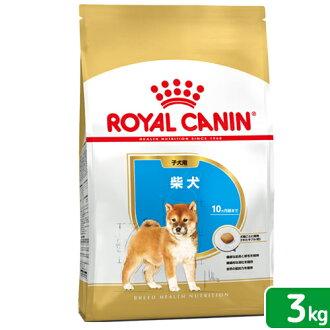 供皇家的迦南BHN日本种小犬小狗使用的3kg正规的物品3182550823944一人仅限5件的关东当天班