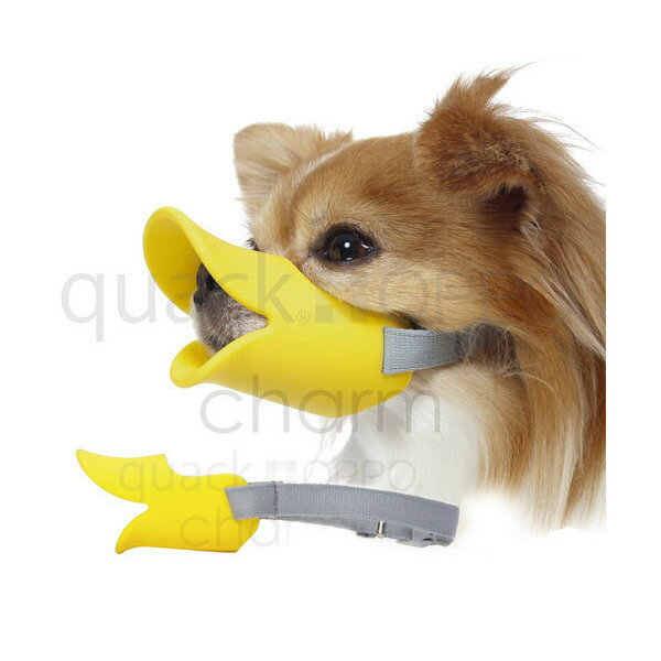 OPPO quackクァック S イエロー 正規品 犬 口輪 ムダ吠え防止 関東当日便