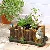 (화분) ジブリプランター의 다 육 寄せ植え ~ 토토로 통나무를 타고 ~ 만들기 세트