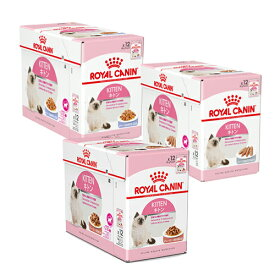 ロイヤルカナン 猫 成長後期の子猫用 食べ比べセット 3種各12袋 計36袋 関東当日便