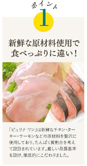 ピュリナワンキャット子ねこ用チキン2.2kg関東当日便