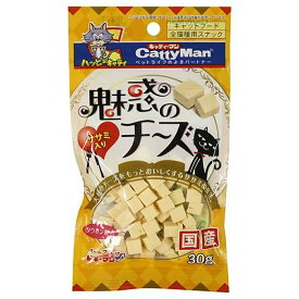 キャティーマン 魅惑のチーズ ササミ入り 30g 猫 おやつ ドギーマン 2袋入り 関東当日便