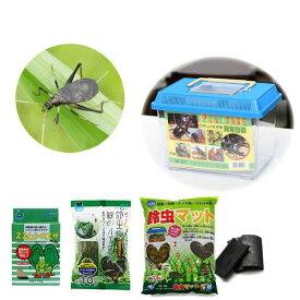 (昆虫)鈴虫付き飼育セット(小) スズムシ 飼育セット 本州四国限定