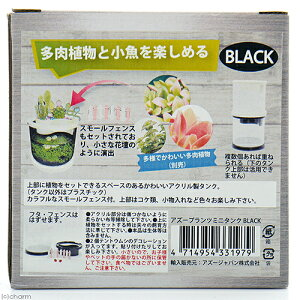アズープランツミニタンクブラック【HLS_DU】関東当日便