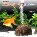 天然素材 ココナッツ サブフィルター 水中フィルター・投げ込み式フィルター エアレーション 関東当日便