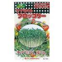 お買得セット スプラウトタネ ブロッコリー KS100−752 カネコ種苗 2袋入 家庭菜園 関東当日便