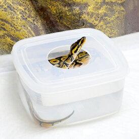 ウォーターシェルター Mサイズ 爬虫類 ヘビ 蛇 シェルター 関東当日便