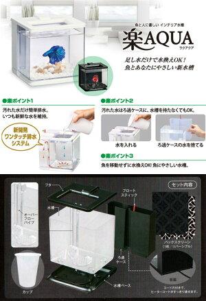 GEX楽アクアブラック小型水槽【HLS_DU】関東当日便