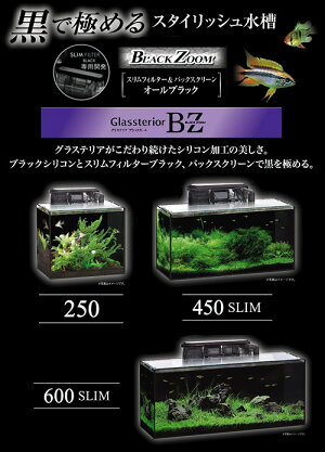 お一人様1点限りGEXグラステリアBZ600Sセット【HLS_DU】関東当日便