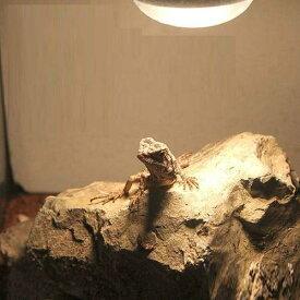 形状お任せ 爬虫類用バスキングスポット 〜ウォーム・ストーン〜 大1個 爬虫類 レイアウト用品 関東当日便