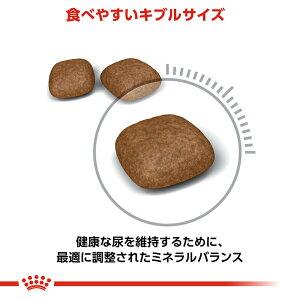 ロイヤルカナン猫ユリナリーケア2kg3182550842938ジップ付関東当日便